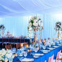 Custom Ceilings Of The Palm Beaches